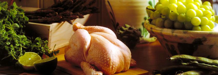 Kip in alle soorten en maten